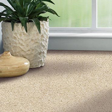 Shaw Carpet Bellera Collection | Eagle River, WI